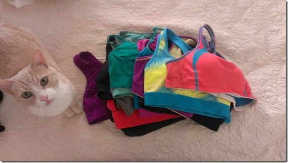 vegas loves sports bras (800x450)