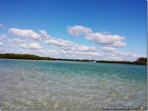 beautiful FL (800x600)