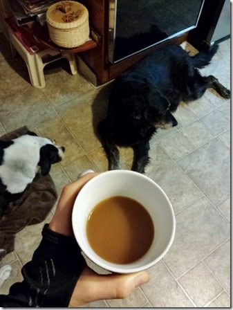 coffee and dogs (600x800)