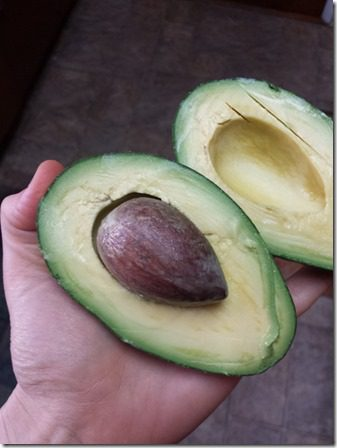 straight up avocados (600x800)