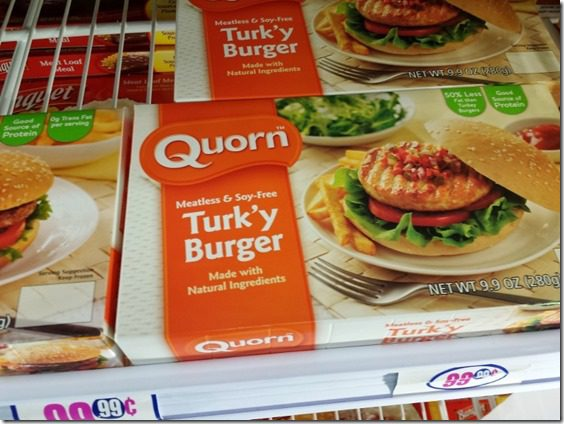 quorn veggie burgers without soy blog (800x600)