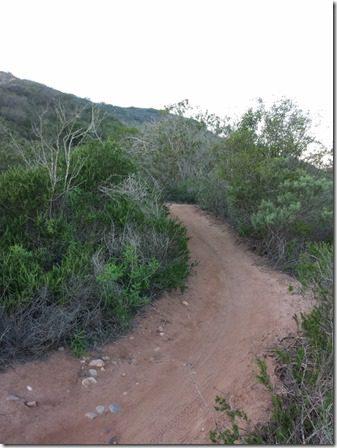 oc hike (600x800)
