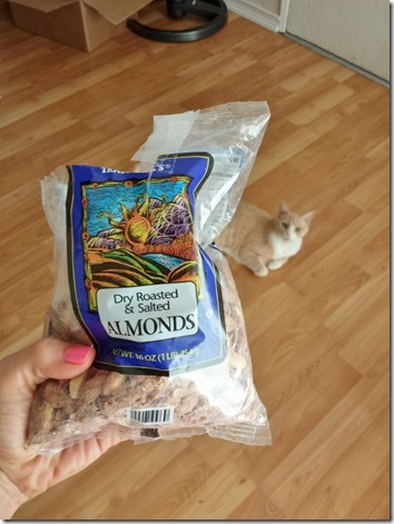 almonds and a cat (600x800)