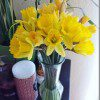 buy-flowers-for-yourself-600x800_thumb.jpg