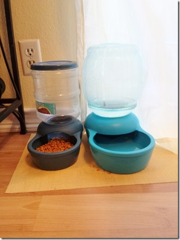 cat feeder and water (600x800)