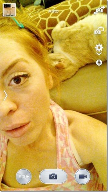 cat photo bomb time (800x450)