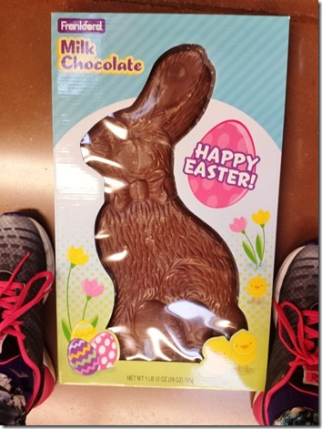 huge chocolate bunny (600x800)