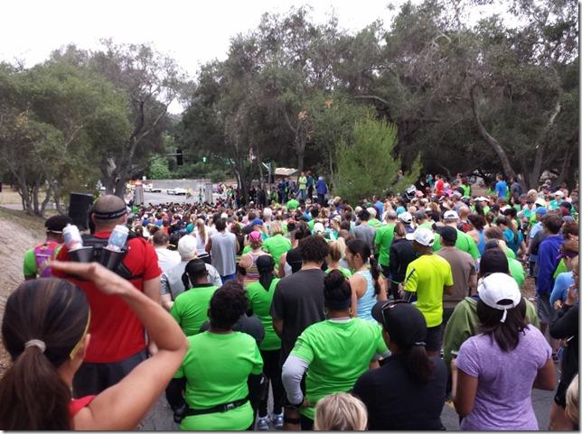 avocado half marathon results and recap 13 (800x600)