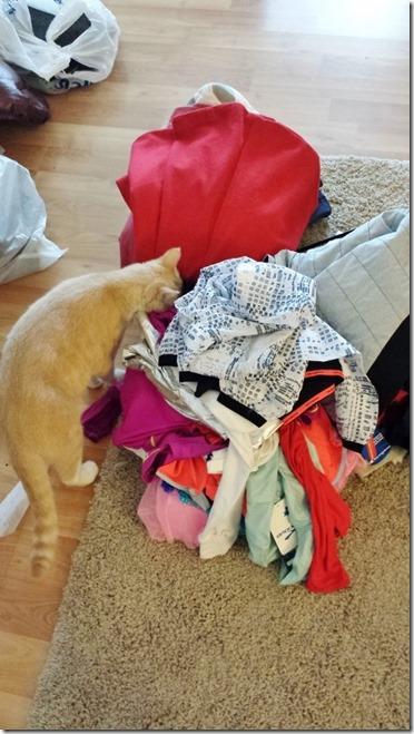 vegas helping how to do closet capsule organize blog (450x800)