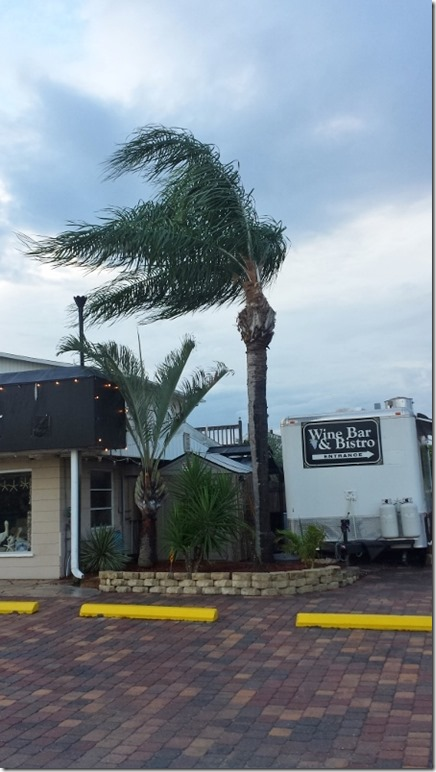 very windy florida run blog (450x800)