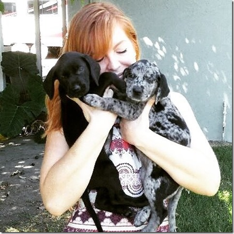 goal weight puppy blog