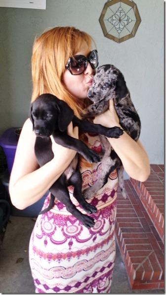 puppy life blog 4 (450x800)