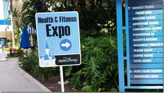 disneyland half marathon tips running blog 6 (800x450)