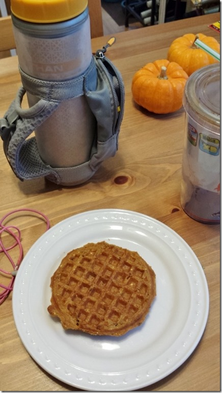 pumpkin spice waffles before run (450x800)