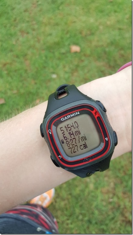 lexus lace up 10k race irvine running blog 19 (450x800)