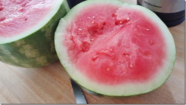 watermelon is life long beach marathon weekend (800x450)
