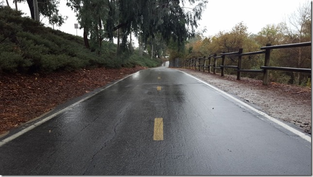 its raining in souther california what the heck (800x450)