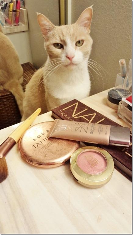 cat criticizes my makeup (450x800)