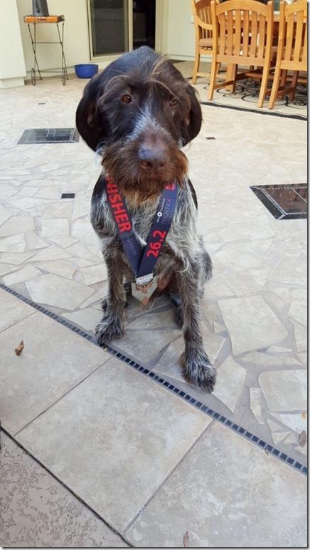elmer with phoenix marathon medal (450x800)