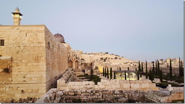 eating after the jerusalem marathon 5 (800x450)
