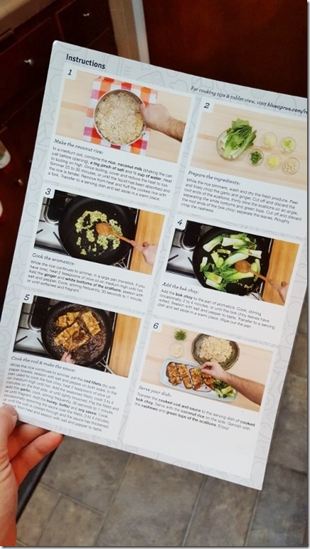 blue apron dicount and review 13 (450x800)