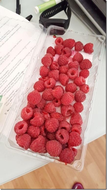 raspberries in the morning (450x800)