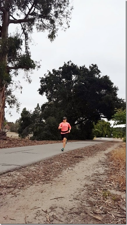 marathon training week 2 blog 1 (450x800)