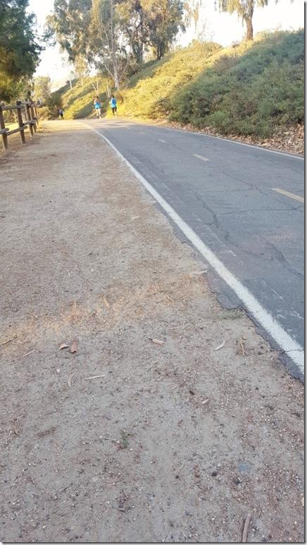 road runner running group (450x800)