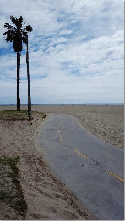 venice beach 2 (450x800)