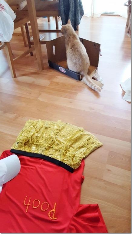 winnie the pooh tigger running costume 7 (450x800)