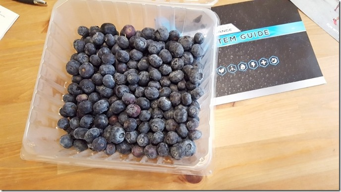 blueberries for snack (450x800)