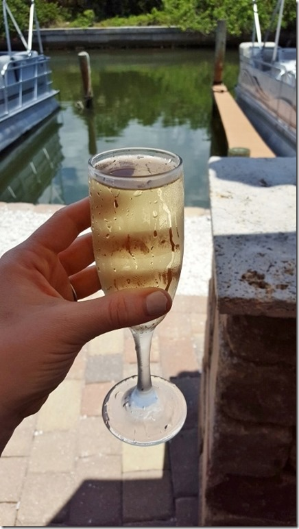 champagne in florida travels (450x800)