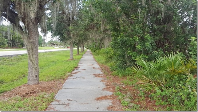 florida travel and running blog 3 (800x450)