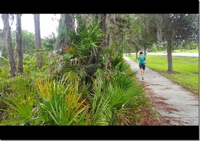 florida travel and running blog 8 (450x800)