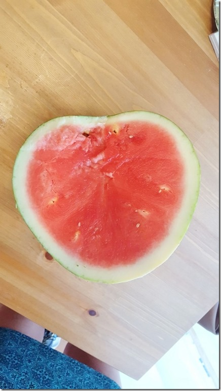 heart watermelon 1 (450x800)