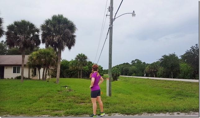 marathon training week 4 1 (800x450)