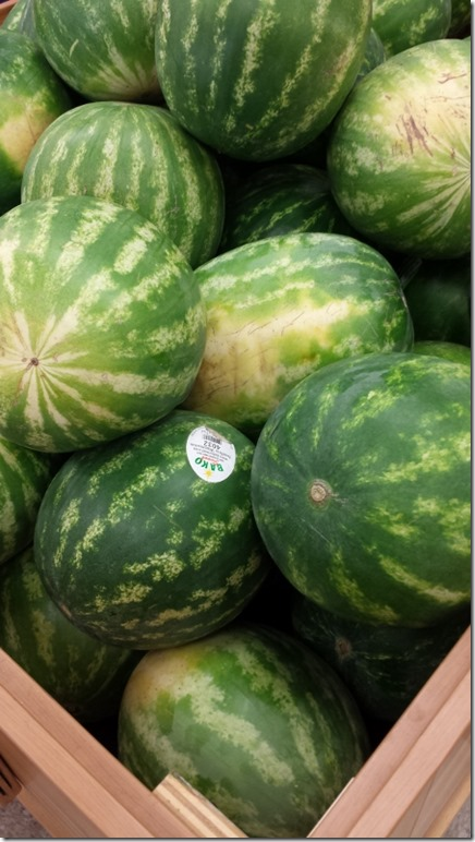 watermelon love blog (450x800)