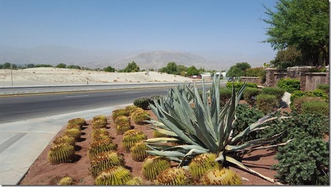 desert villas palm springs 5 (800x450)