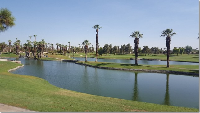 desert villas palm springs 8 (800x450)