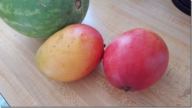 super ripe mangos (800x450)