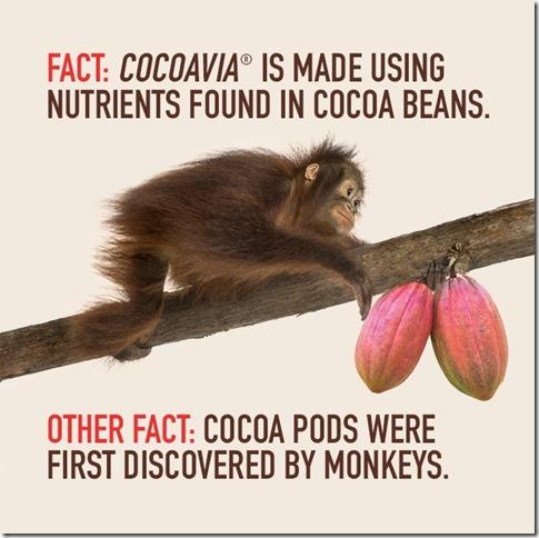 cocoavia supplement