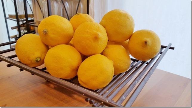 lazy lemon water (800x450)