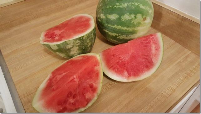 midnight watermelon (800x450)