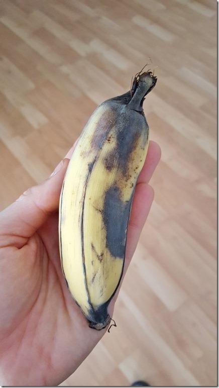 apple bananas from neighbor (450x800)