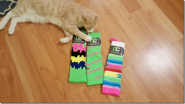 procompression rainbow socks (800x450)