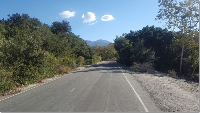 running in orange county (800x450)