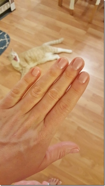 nails and cat yawn (360x640)