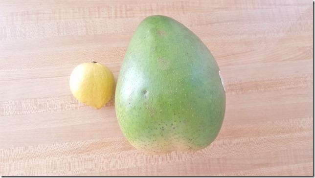worlds largest mango (800x450)
