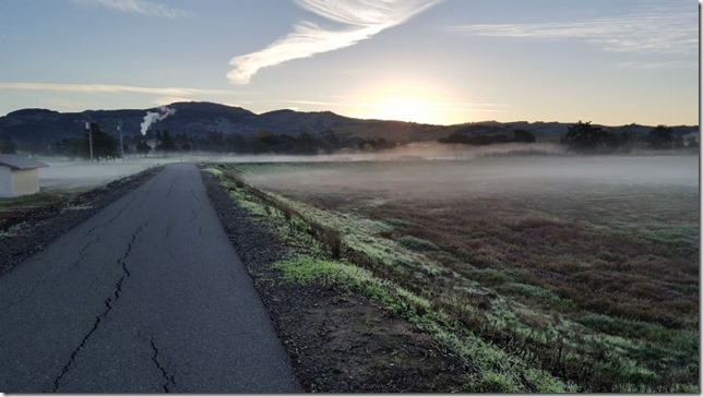running in napa 12 (800x450)