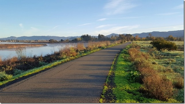running in napa 18 (800x450)